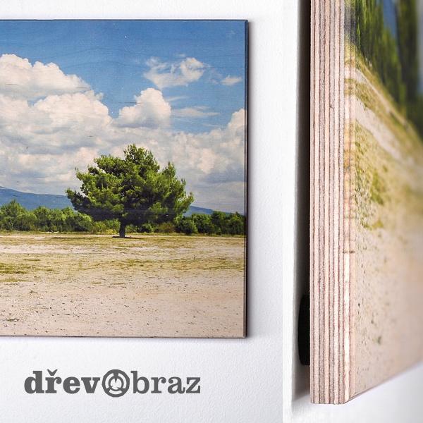 Dřevobraz - fotka na dřevo